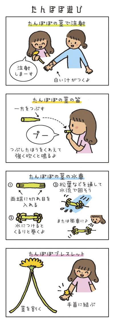 たんぽぽ遊び [タンポポの茎で注射] 「注射しまーす」 白い汁がつくよ。 [タンポポの茎の笛] 一方をつぶす「プー」 つぶしたほうをくわえて強く吹くと鳴るよ。 [タンポポの茎の風車] 1.両端に切れ目を入れる 2.水につけるとくるりと巻くよ 3.松葉などを通して水流で回そう。 または風車に。 [たんぽぽブレスレット] 茎を割く。手首に結ぶ。