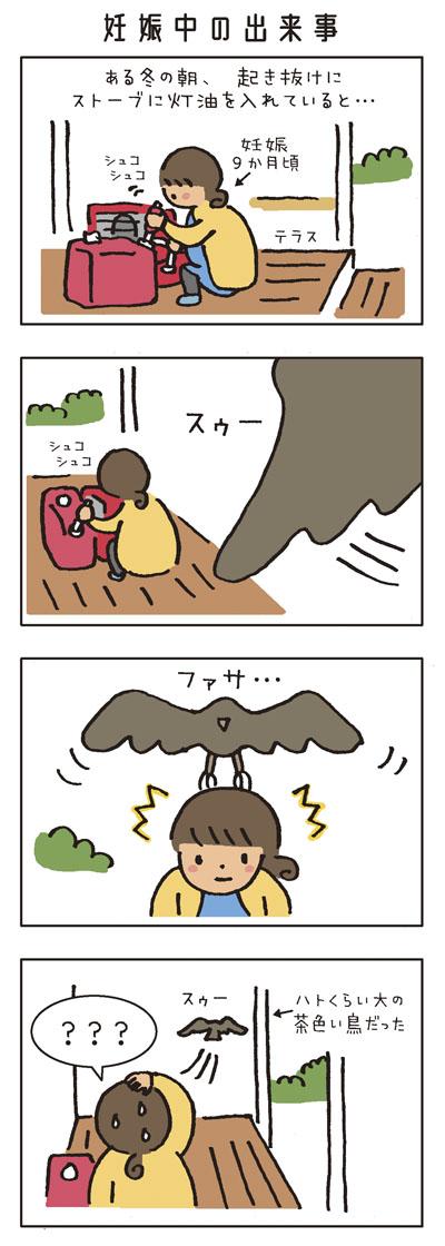 妊娠中の出来事 妊娠9か月頃。 ある冬の朝、起き抜けにストーブに灯油を入れていると… 「スゥー」ファサ…! 頭に何かが…! ハトくらいの大きさの鳥だった。 「???」