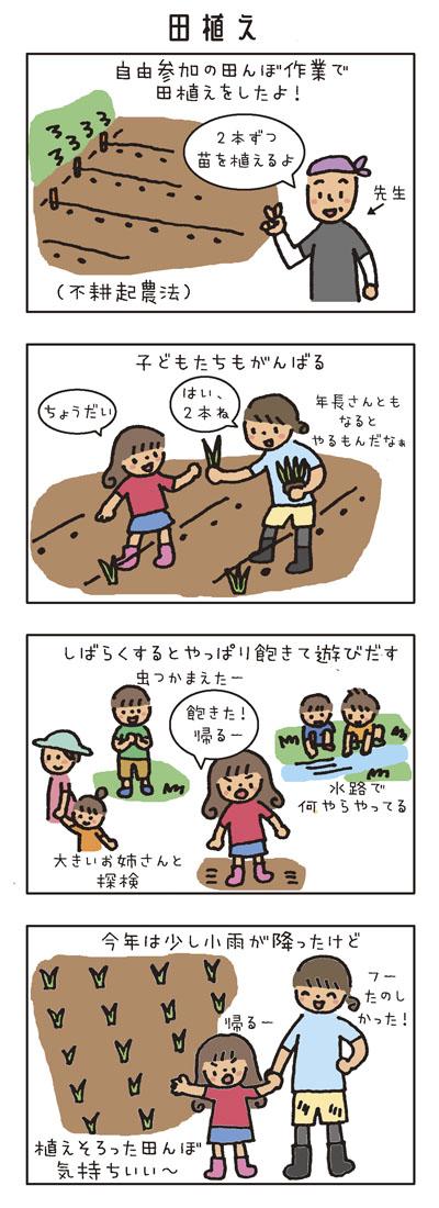 [田植え] 自由参加の田んぼ作業で田植えをしたよ!不耕起農法です。 「2本ずつ植えるよ」(先生) 子どもたちもがんばる。 「ちょうだい」「はい、2本ね」 (年長さんともなるとやるもんだなぁ) しばらくするとやっぱり飽きて遊びだす。 「虫つかまえたー」 「飽きた!帰るー」 大きいお姉さんと探検。 水路で何やらやってる。 今年は少し小雨が降ったけど、植えそろった田んぼ、気持ちいい〜。